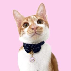 cat_4136